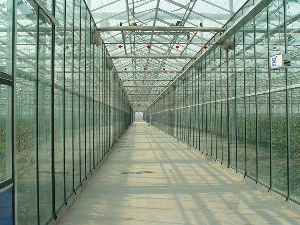 文洛式玻璃智能温室